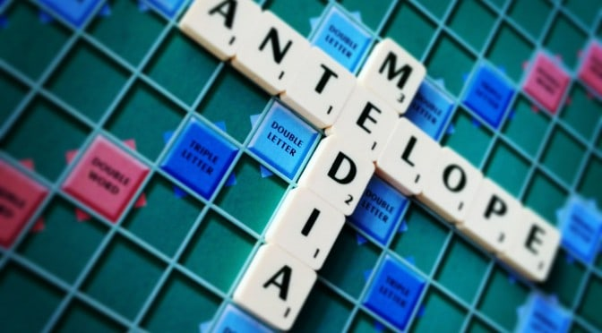 Content marketing, copywriting, fiinancial services, Antelope Media, editing